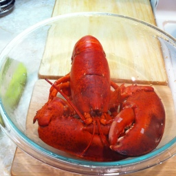 Lobstahs. Just Because.